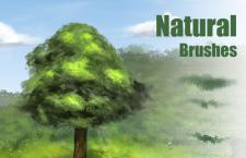 大自然树叶和草的PS笔刷