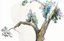 树木剪影PS笔刷