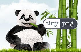 在线图片压缩网站:TinyPNG