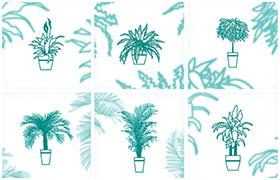 8款室内植物矢量素材,AI源文件