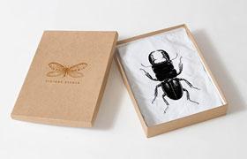 20种昆虫矢量插图集,AI源文件