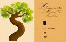 植物插画Photoshop笔刷