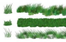6种草丛Photoshop笔刷