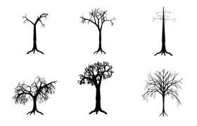 24棵树木PS形状,csh格式
