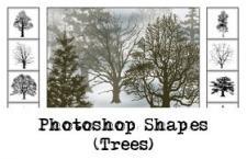 树木剪影Photoshop自定义形状