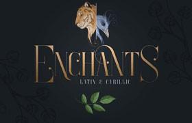 Enchants 充满魔力的英文字体